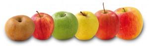 pommes.ligne
